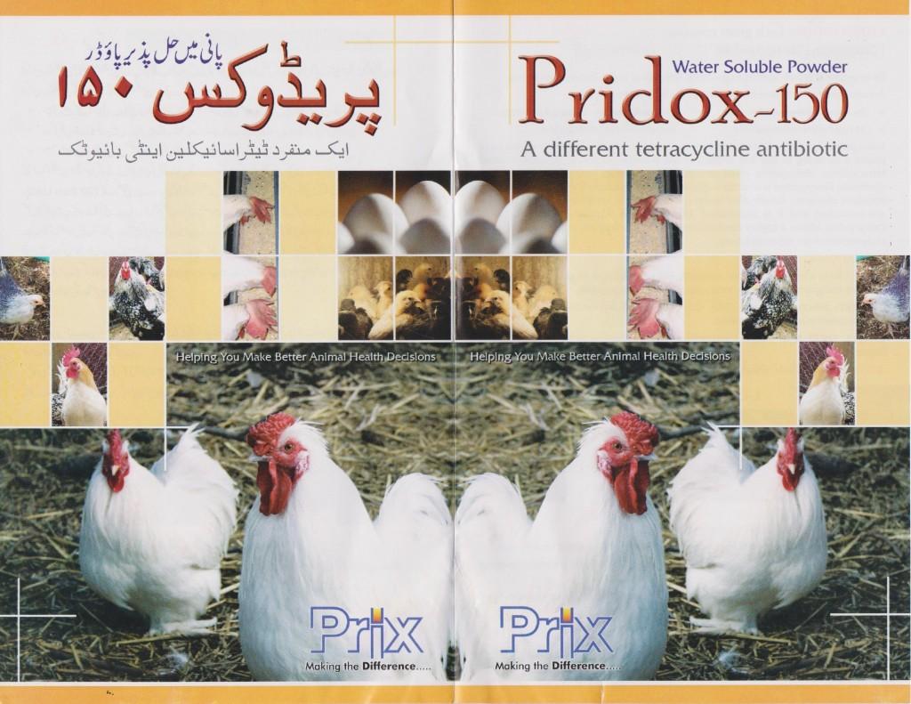 Pridox Front