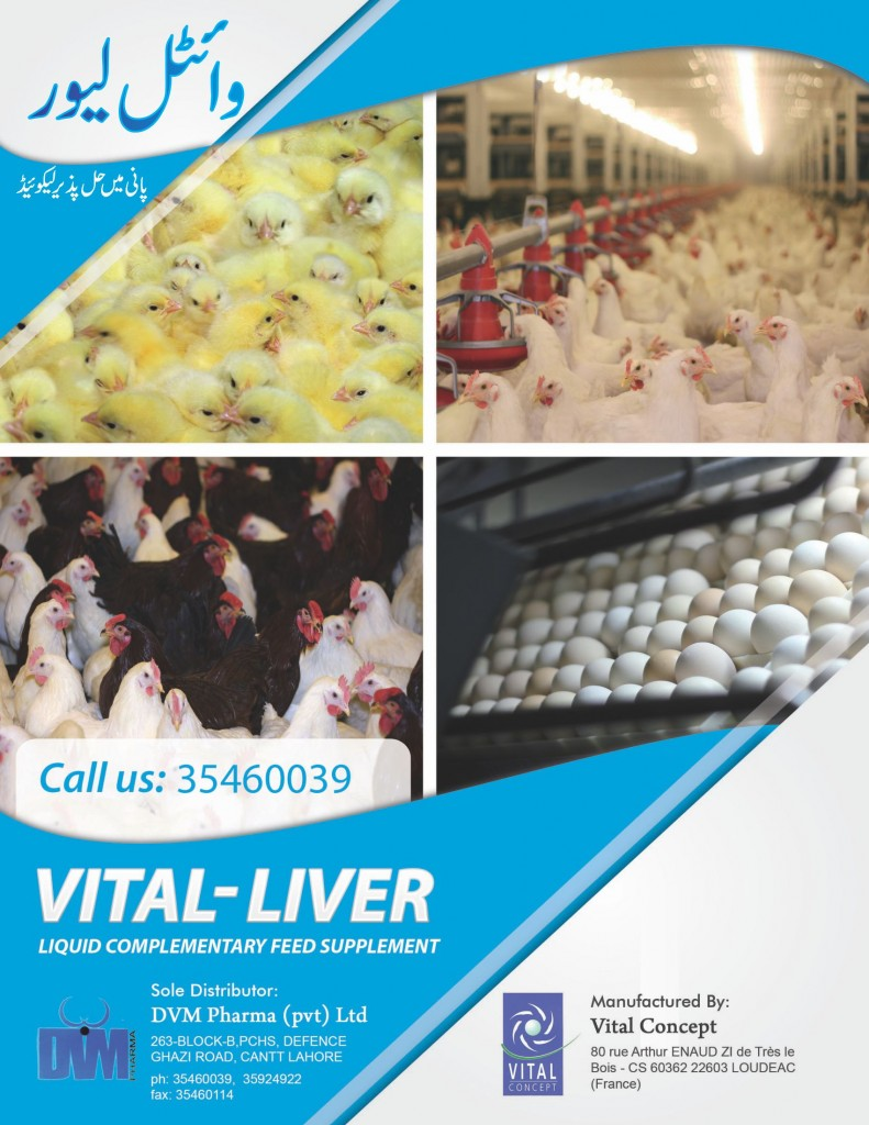 Vital Liver Front