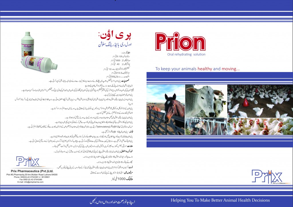 prion leterature final embeded-01