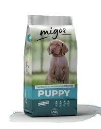 Migos Puppy